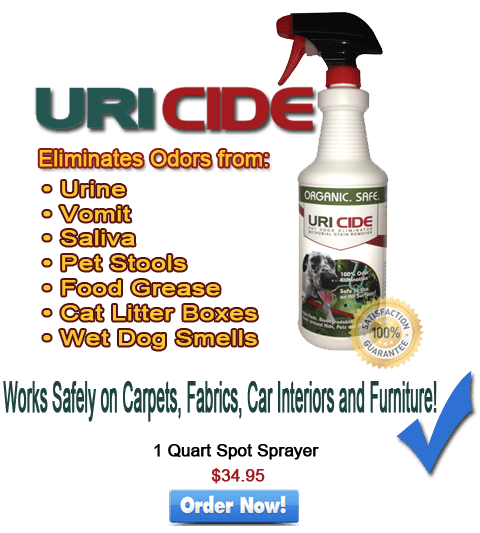 enzyme based pet odor removal products