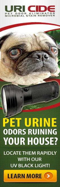 detect pet urine with UV black light