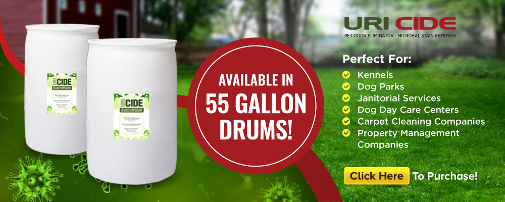 Remove Urine Smells From Artificial Turf Remove Pet Urine