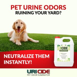 Neutralize Urine Odors Instantly
