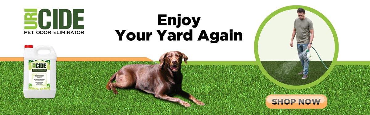 eliminate odors from artificial turf