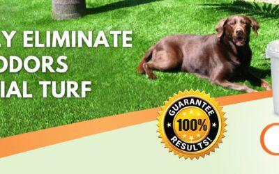 Yard Smells like Dog Pee   Homemade Yard Odor Eliminator