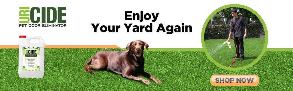 odors and smells on artificial turf